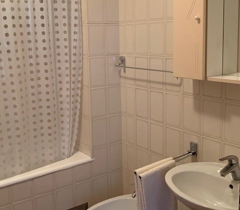 The bathroom of the property A1246 in Croatia.