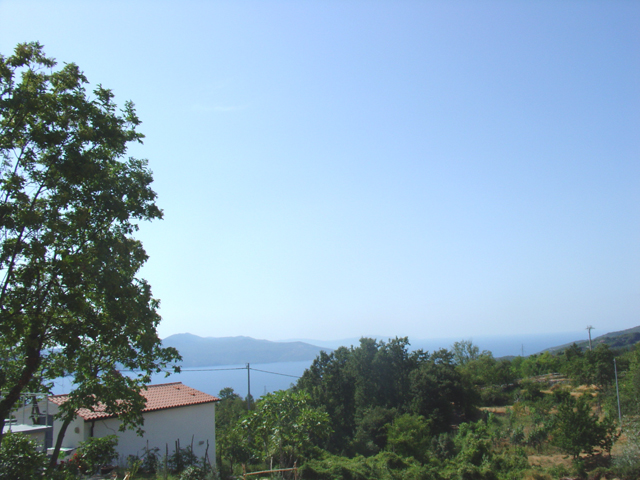 The view to the side and the neighbors of the land in Moscenicka Draga, Istria