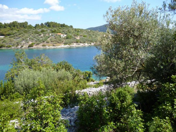 This is the sea view from the building plot by the sea for sale in Croatia, Korcula. Property with sea view, panoramic scouting