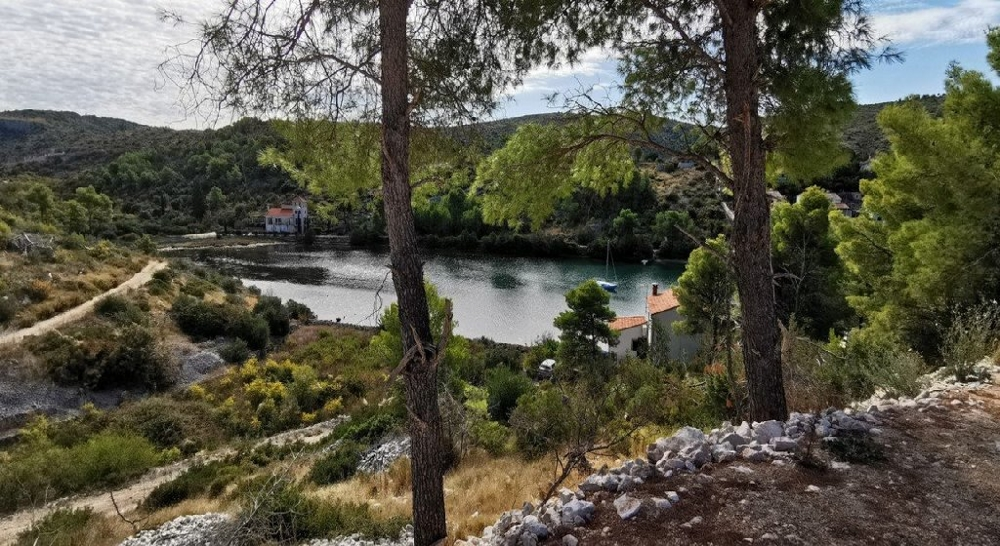 Buy land with privacy in Croatia.