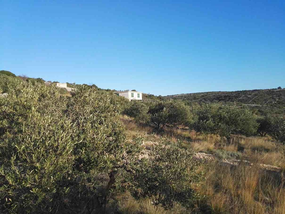 Here is a large building plot for sale in Rogoznica, Dalmatia