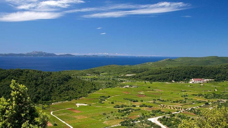 Real estate with sea view Croatia - Panorama Scouting Real Estate Croatia.